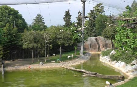 Parco Faunistico Le Cornelle Image