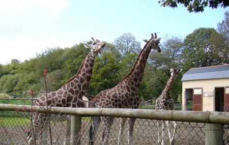 Parc Zoologique Et Chateau De La Bourbansais Image
