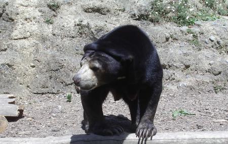Wellington Zoo Image