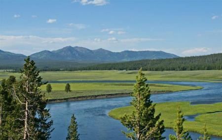 Hayden Valley Image