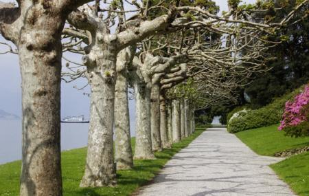 Villa Serbelloni Gardens Image