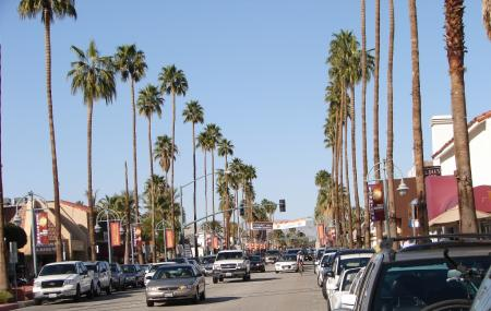 Palm Canyon Drive Image