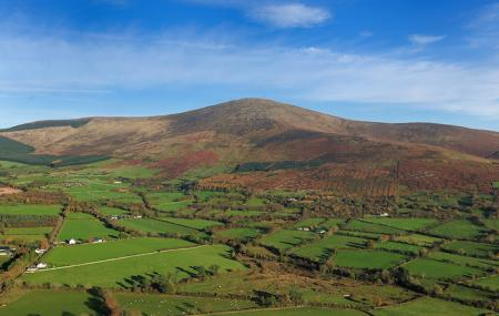 Mount Leinster Image