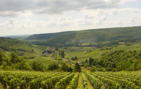 Chemins De Bourgogne Image