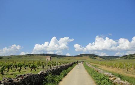 Burgundy Evasion Bike Tours Image