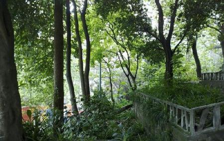 Louqat Hill Park Image