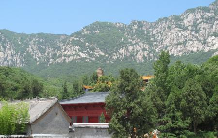 Shaolin Temple In Song Mountains Image