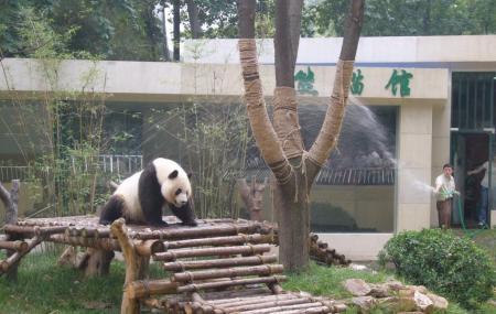 Wuxi Zoo, Wuxi