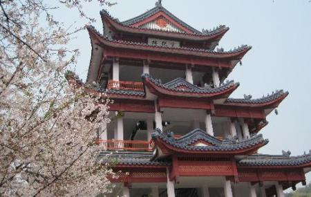 Taihu Yuantouzhu Scenic Area Image