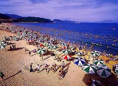 Dameisha Beach Image