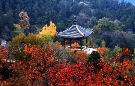 Qi Xia Mountain Image