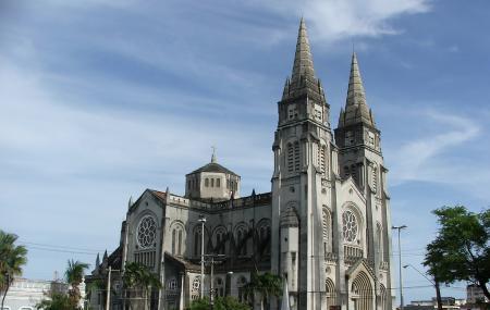 Metropolitana Cathedral Image