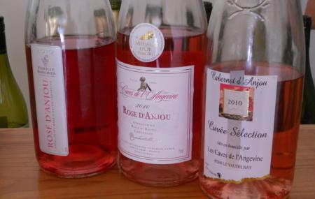 The Vine And Wine Museum Of Anjou-saumur Image