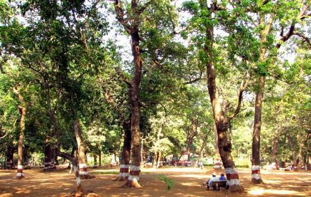 Ryewood Park Image