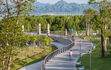Shenzhen Bay Park Image