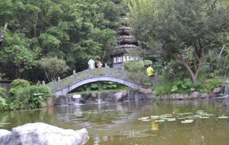 Shenzhen Garden Show Park Image