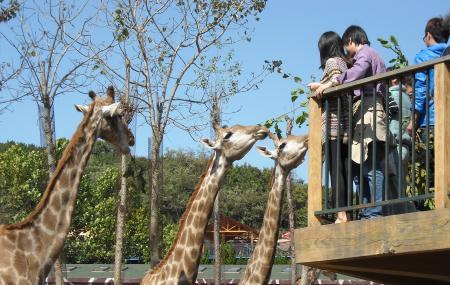 Dalian Forest Zoo Image