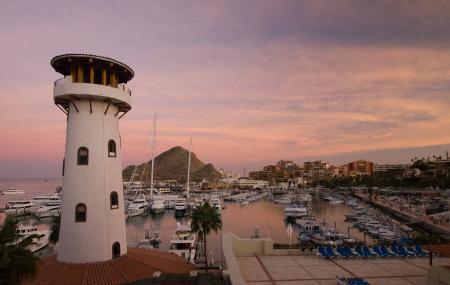 Marina Cabo San Lucas Image