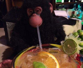 Monkey Business Bar Image
