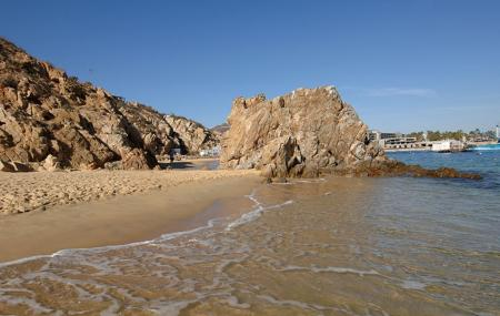 Cannery Beaches Image