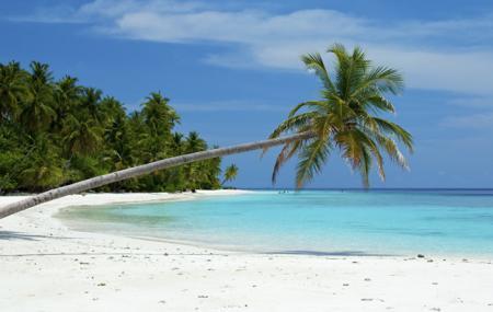 Bharatpur Beach Image