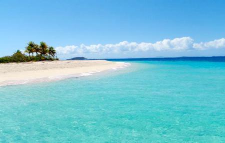 Palomino Island Image