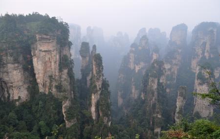 Tianzi Mountain Image