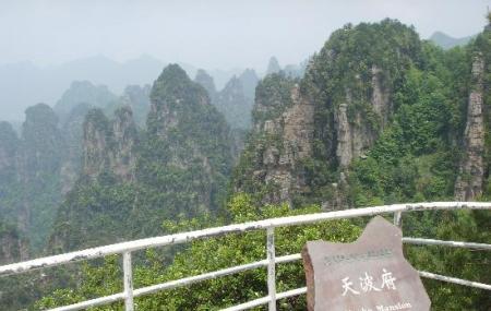 Zhangjiajie Tianbofu Scenic Resort Viewpoint Image