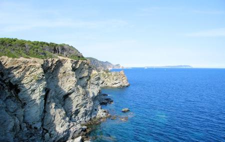 Porquerolles Island Image