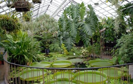 Leipzig Botanical Garden, Leipzig