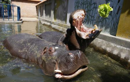 Belgrade Zoo Image