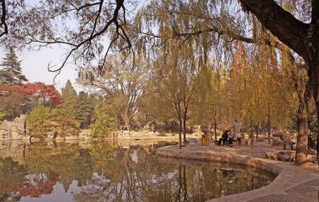King City Park Image
