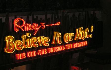 Ripleys Believe It Or Not Image