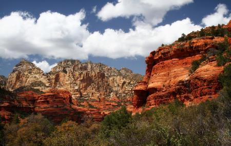 Boynton Canyon Trail Image