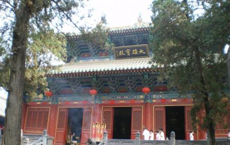 Shaolin Temple Image