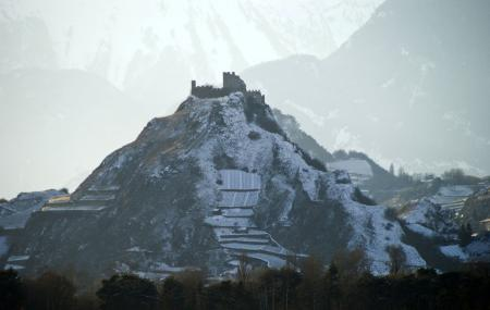 The Snow Garden Of Tourbillon, Sion