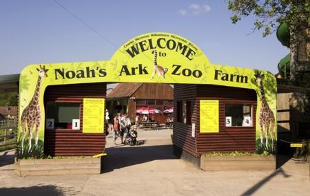Noah's Ark Zoo Farm Image