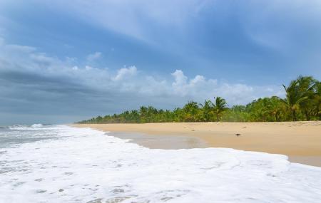 Marari Beach Image