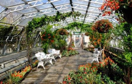 David Welch Winter Gardens Image