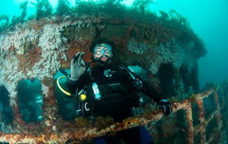 Lena Diving Wreck Image