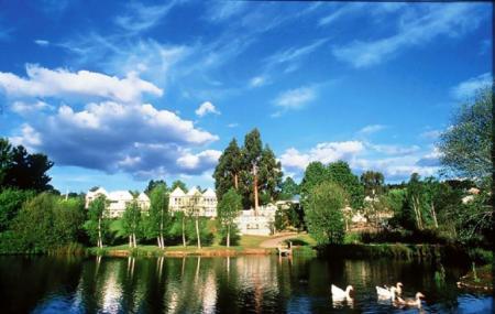 Lake Daylesford Image