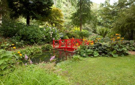 Abbotsbury Subtropical Gardens Image