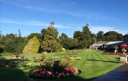 Bicton Gardens Image