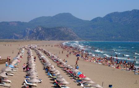 Iztuzu Beach Image