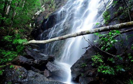 Phaeng Waterfall Image