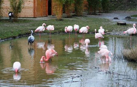 Tierpark Aachen Image