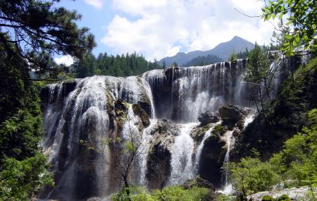 Pearl Shoal Falls Image