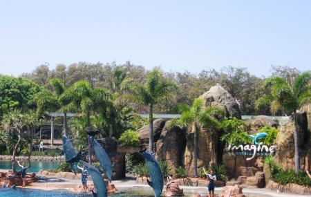Sea World Gold Coast Image