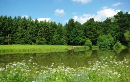 Parc Des Gayeulles Image