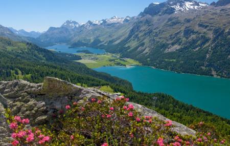 Engadine, St Moritz